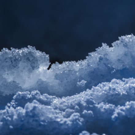 the winter blues, Canon EOS-1D X MARK II, Canon EF 400mm f/4 DO IS