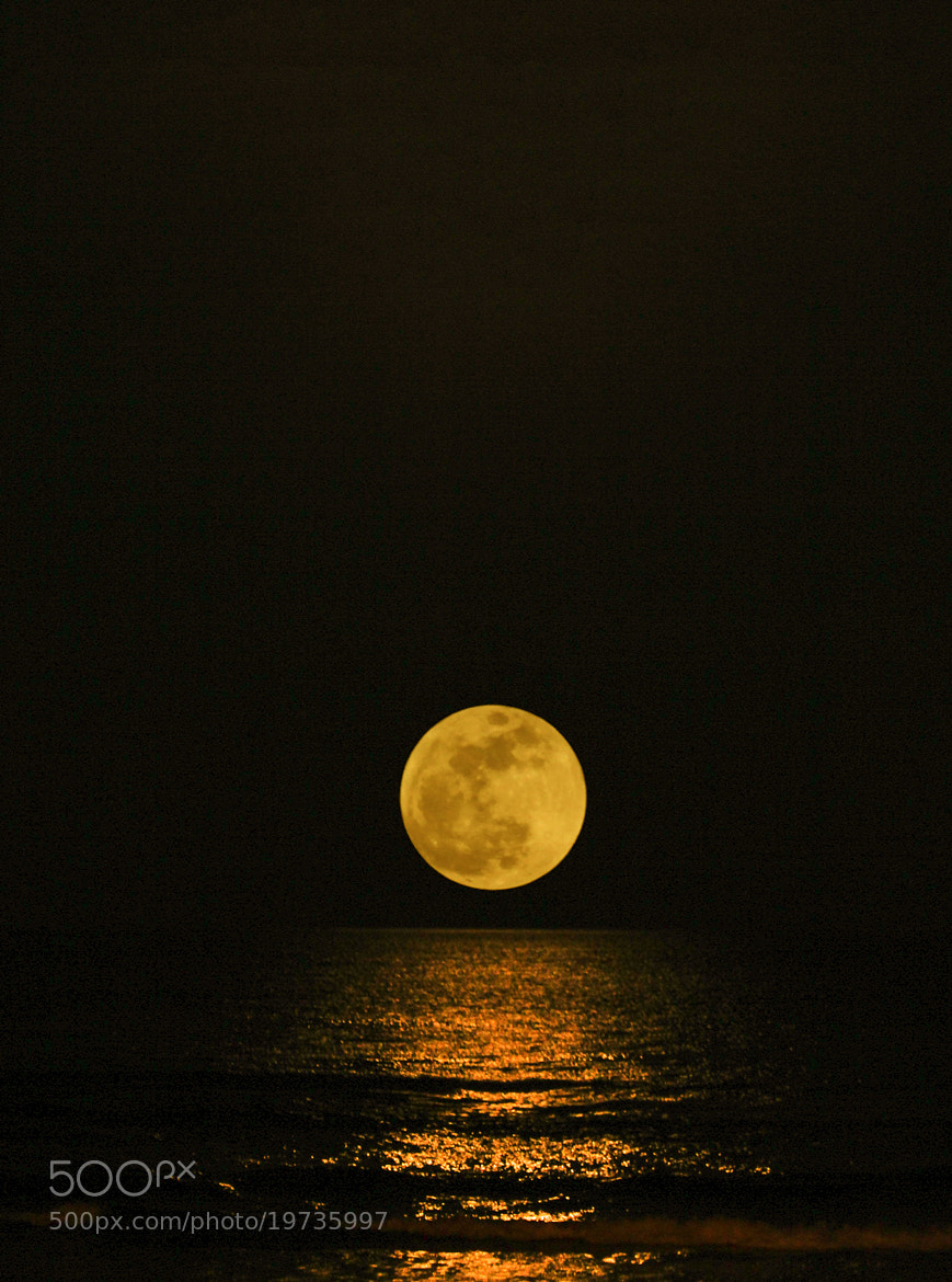 Photograph MOON  by Thành Nguyên AudioPhile on 500px