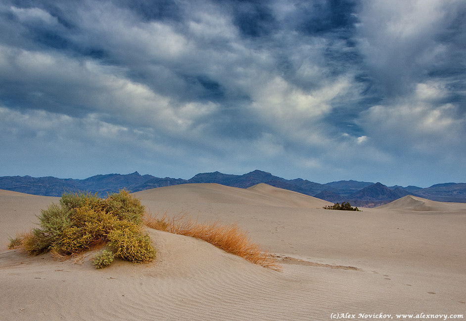 Photograph Death Valley by Alexander Novickov on 500px