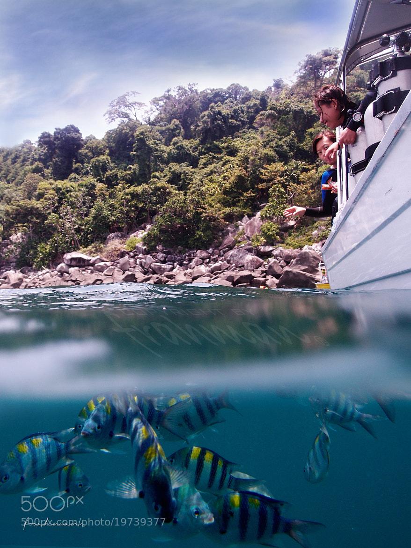 Photograph Fish Feeding by frahman 76 on 500px