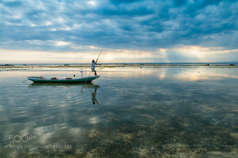 Photograph Seaweed farmer by Arthur Fuse on 500px