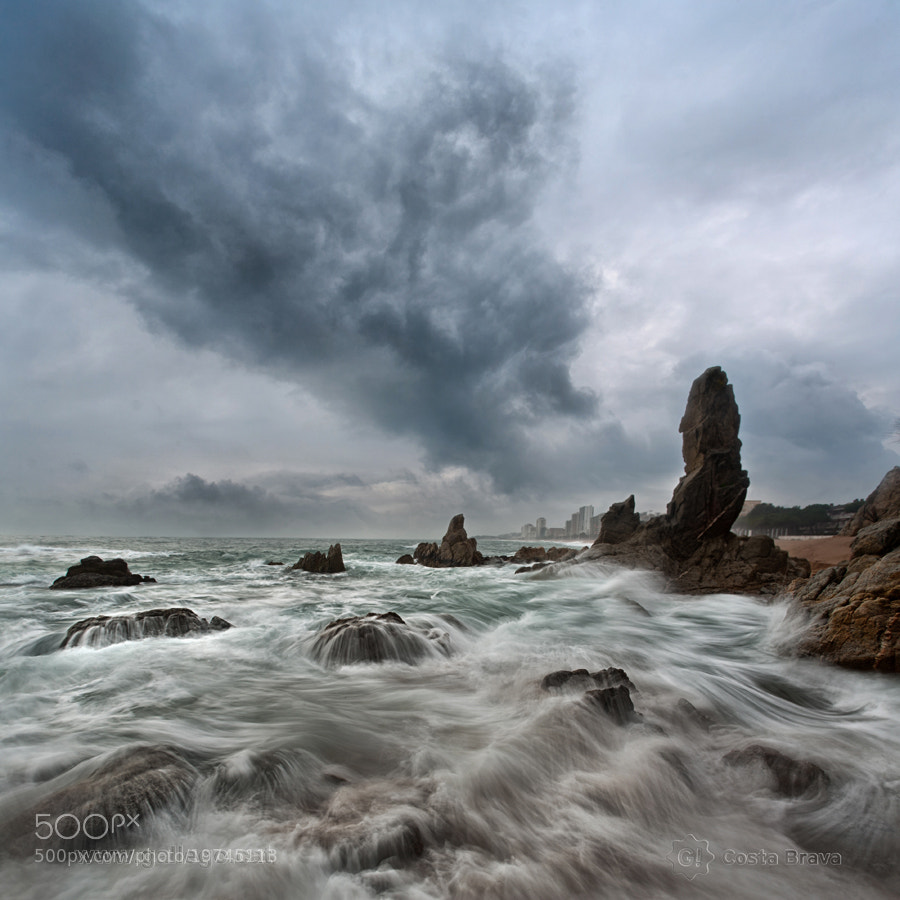Photograph Costa Brava, live nature 14 by Jordi Gallego on 500px