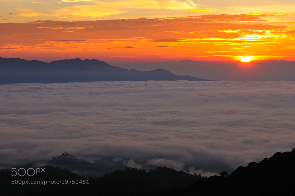 Photograph Morning !!!! by Photos of Thailand .... on 500px