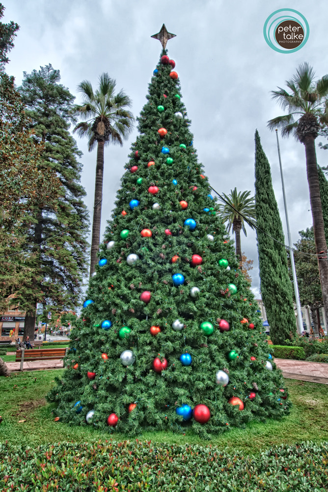 Photograph A SoCal XMas by Peter Talke Photography on 500px
