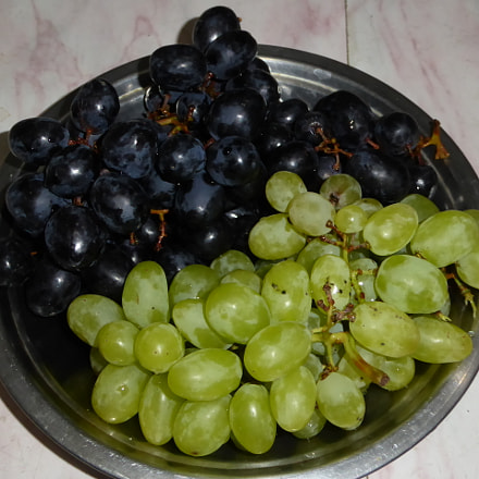 Grapes, Panasonic DMC-ZS40