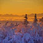 Black Forest sunrise