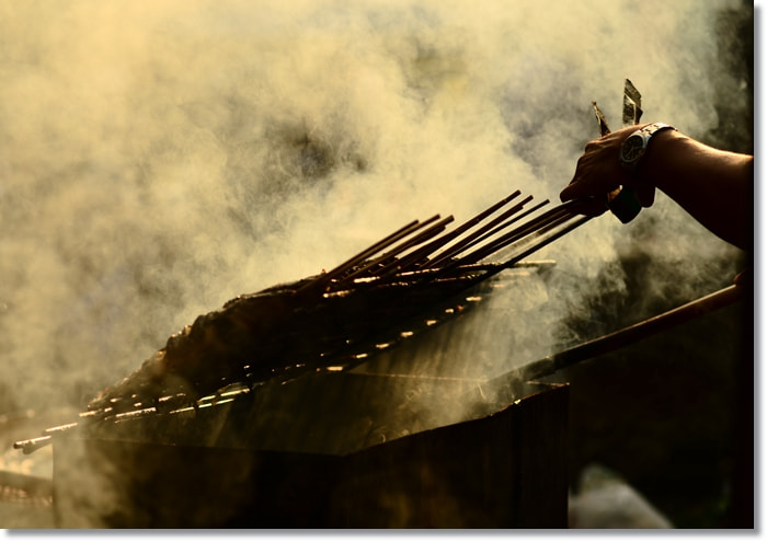 Photograph Grilled catfish. by T K on 500px