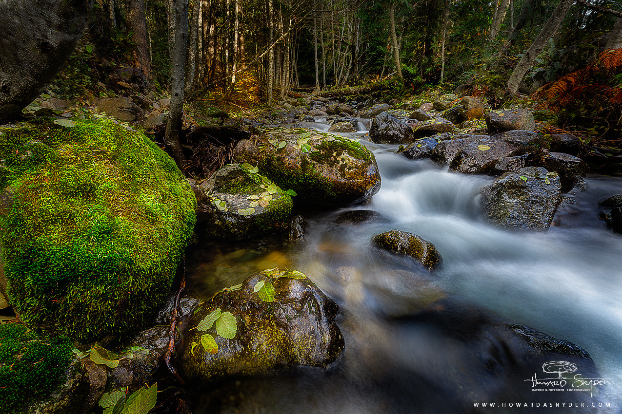 Photograph Kaaches Creek by Howard Snyder on 500px