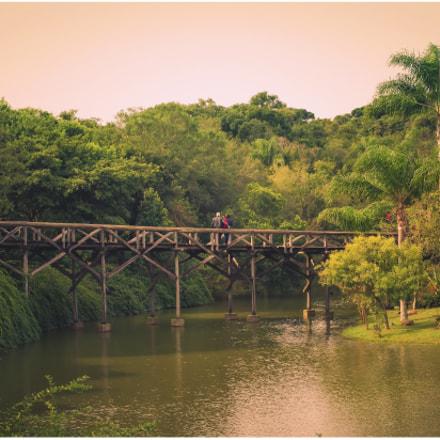 Botânico de Curitiba