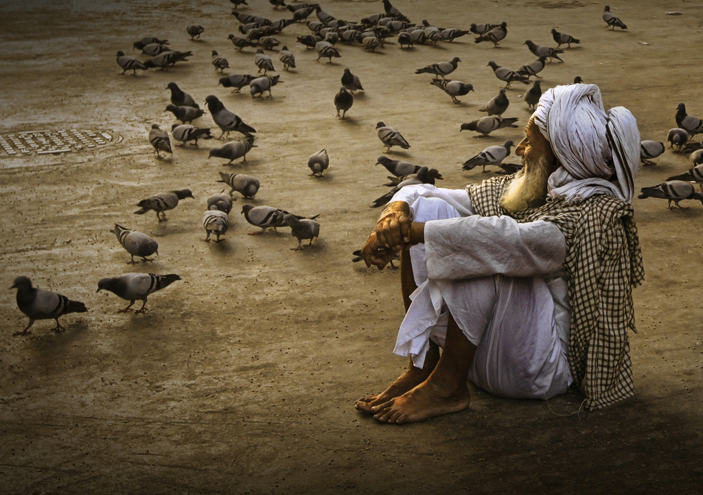 Photograph With Pigeon by Alamsyah Rauf on 500px