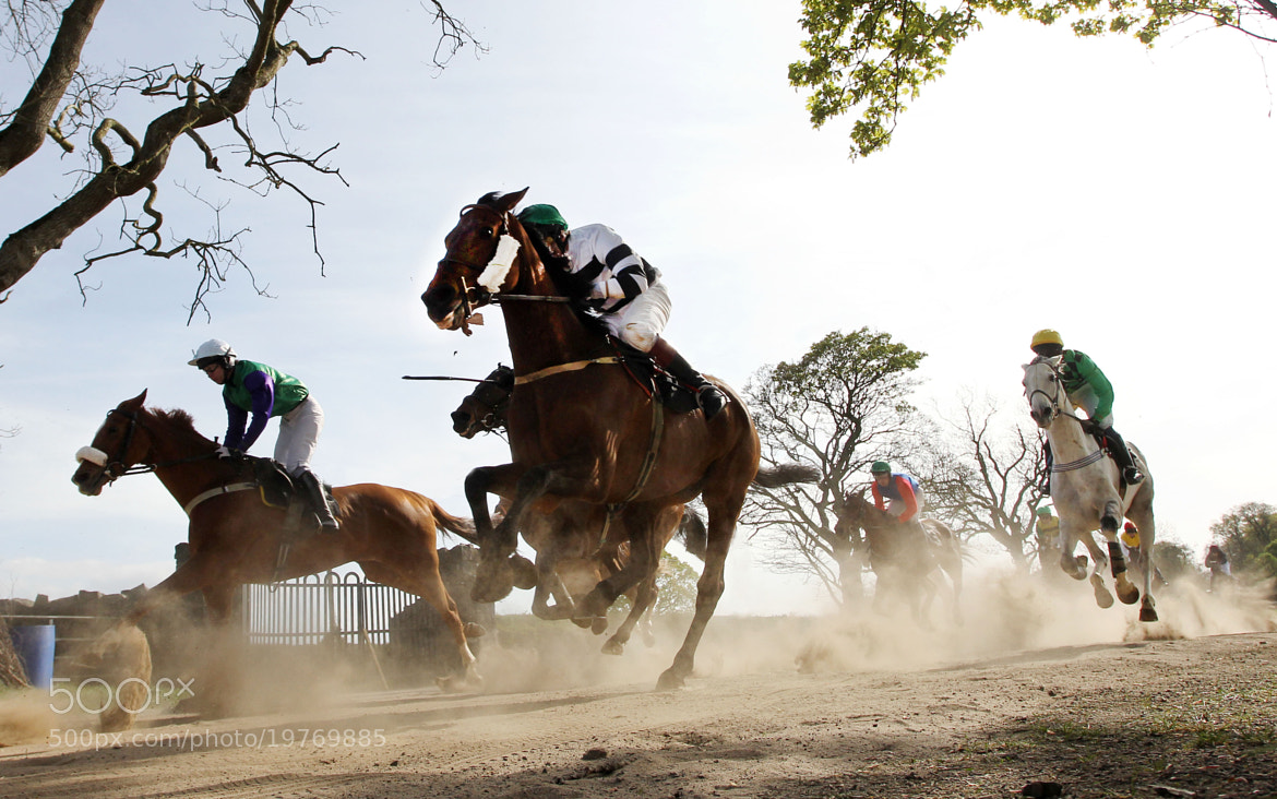 Photograph Point to point  by John McIlwaine on 500px