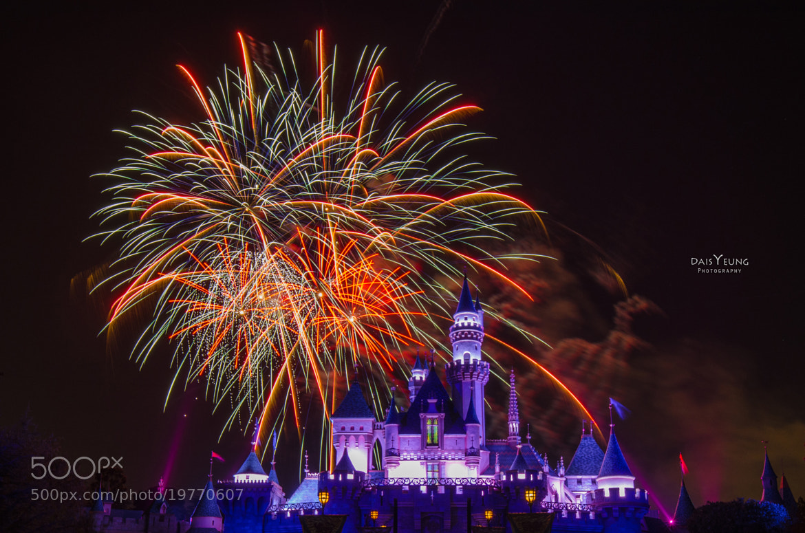 Photograph Disneyland Firework Show - 4752 by Daisy Yeung on 500px