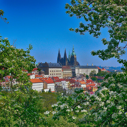 View over Prague castle, Panasonic DMC-LX1