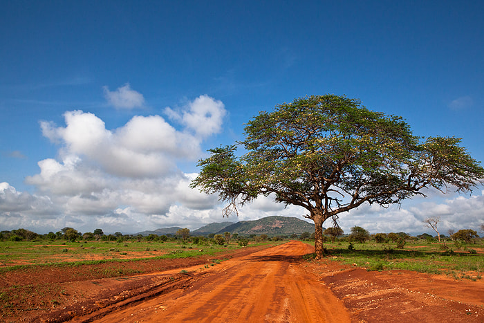 Photograph Red Earth Of Africa by Stefanie Lategahn on 500px