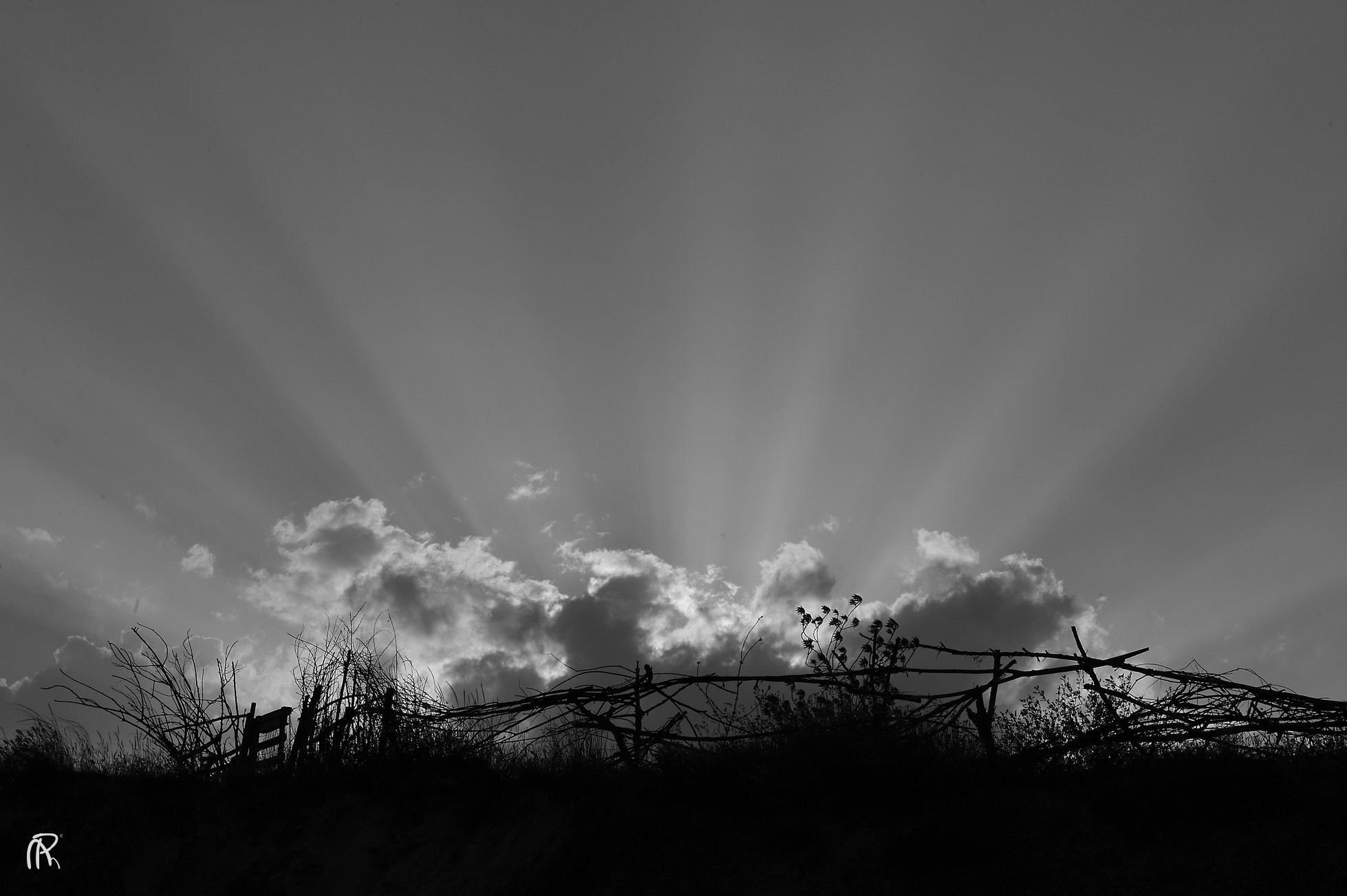 Photograph The edges of light by Mehrdad Paya on 500px