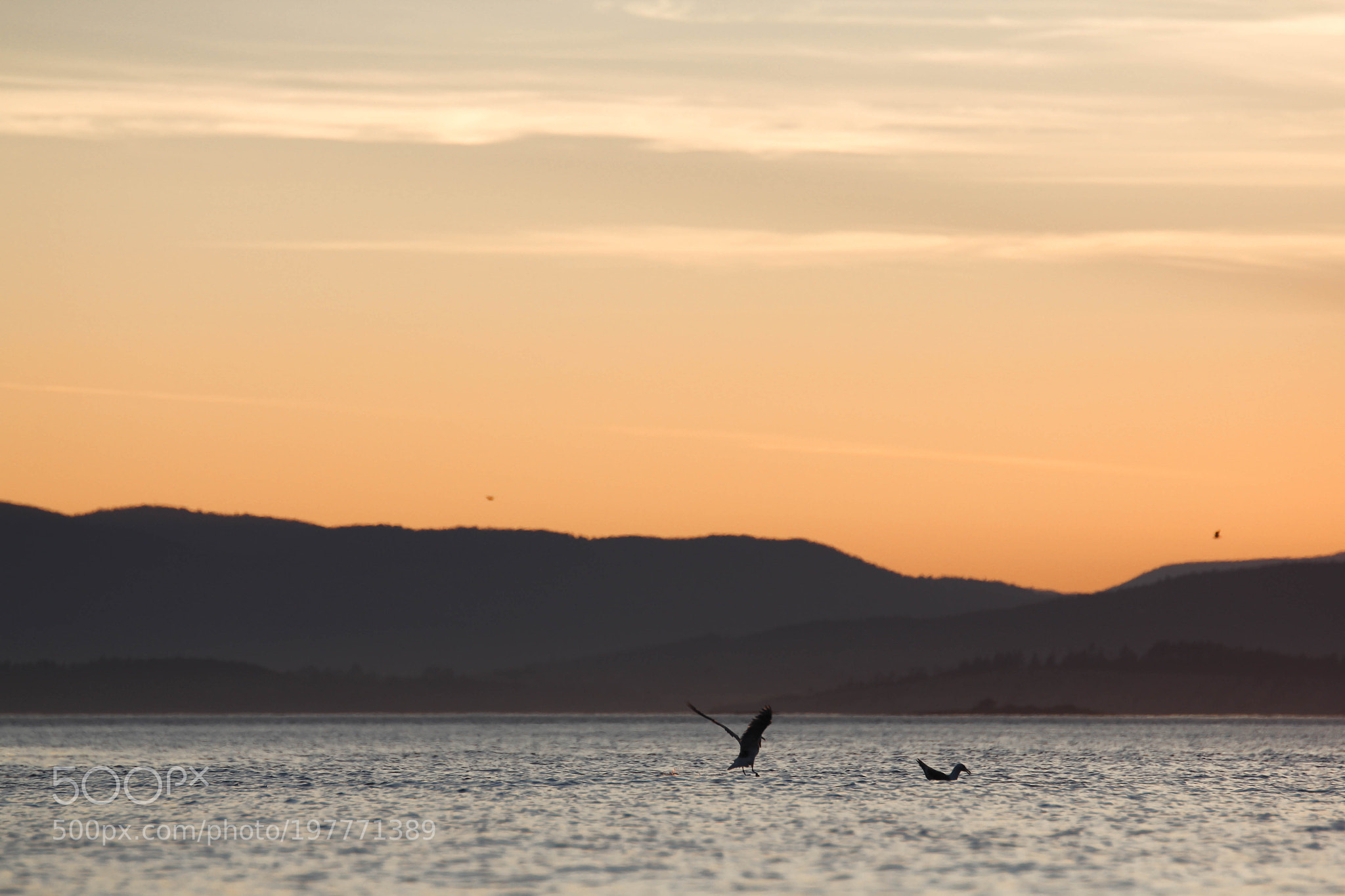 Off San Juan Island into the Pacific Northwest