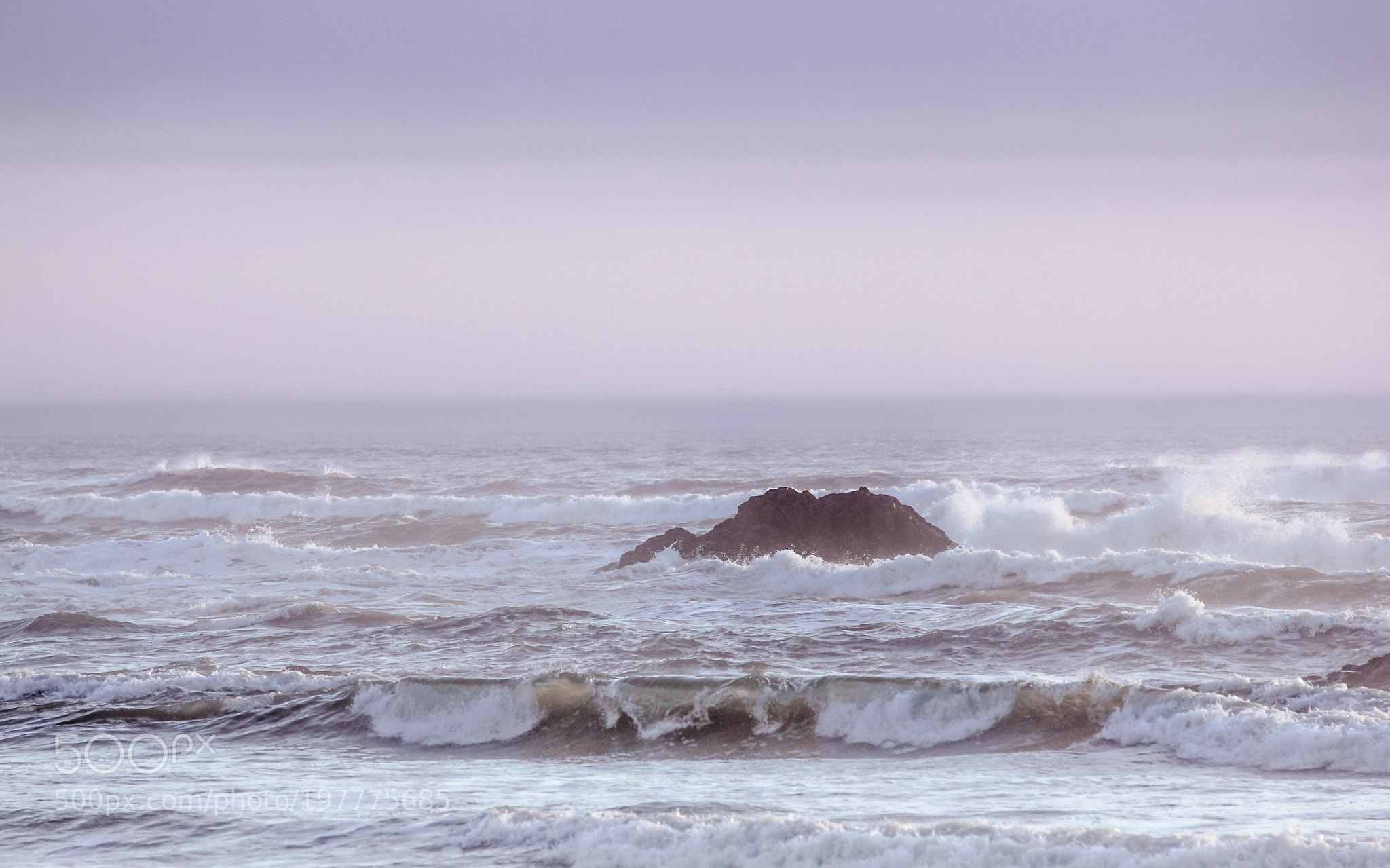 Pacific Symphony in Purple