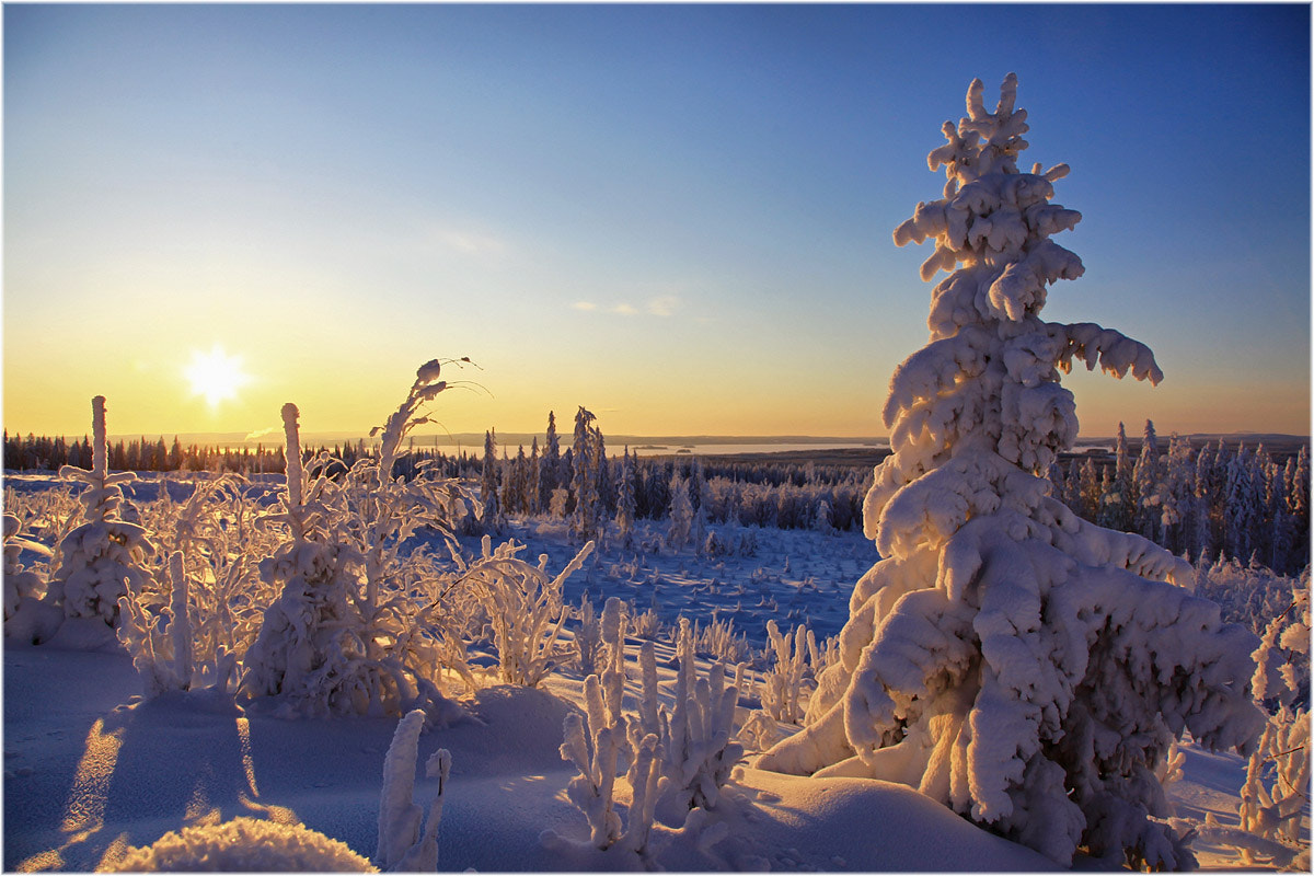 Photograph Frosty evening ... by Valtteri Mulkahainen on 500px