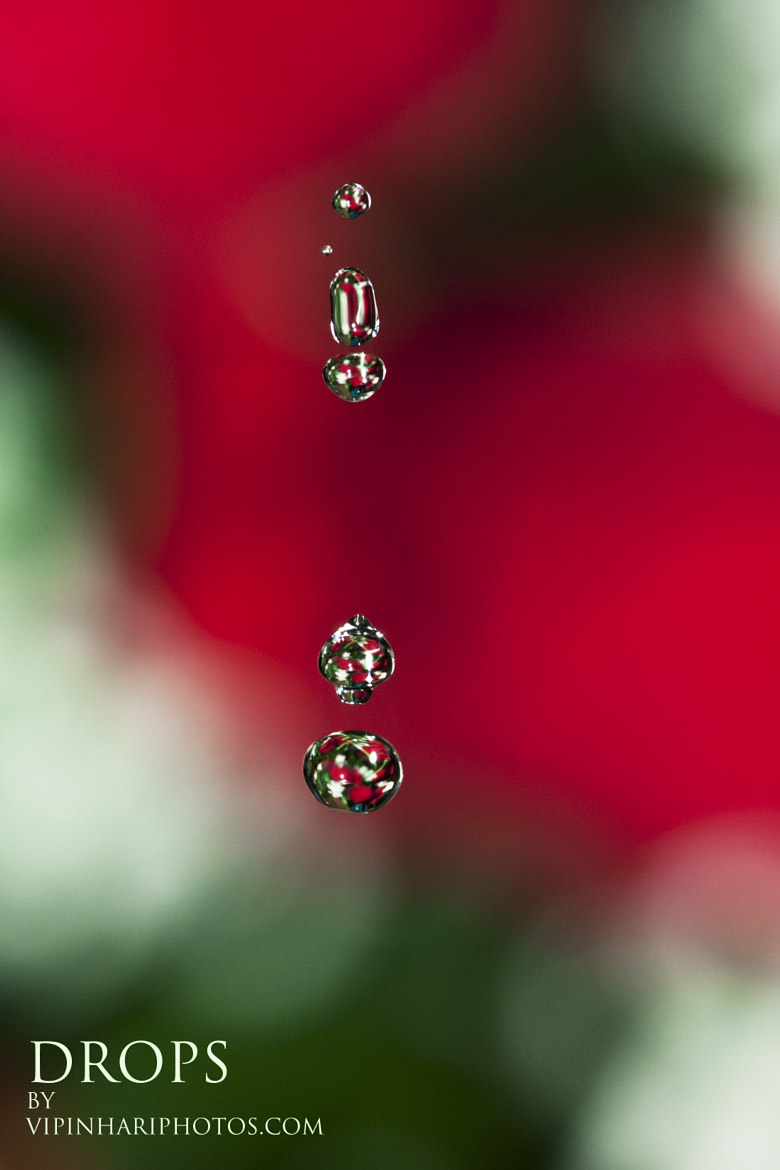 Photograph DROPS 2! by vipin haridas on 500px