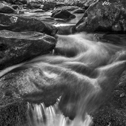 Rocks Wood Water, Nikon D7100, AF-S Nikkor 17-35mm f/2.8D IF-ED