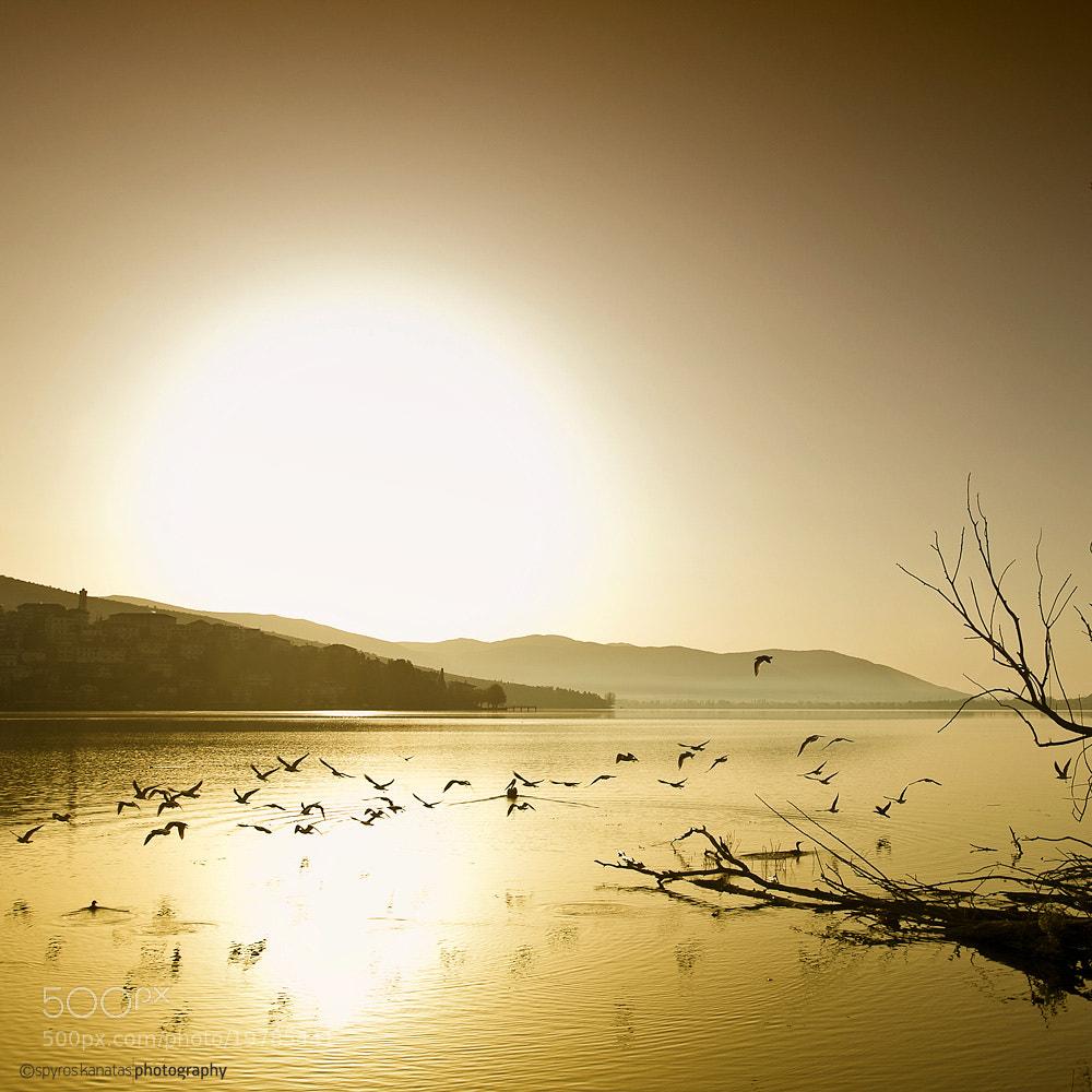 Photograph Lake of Kastoria. by spyros kanatas on 500px