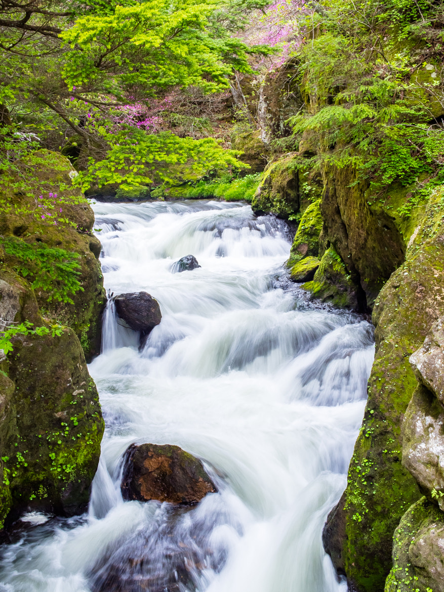 Photograph Stream in Japan by D Wijers on 500px