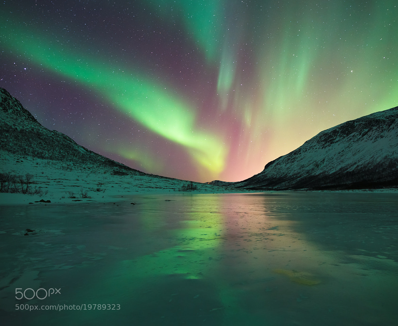 Photograph Night Light by Joe Rainbow on 500px