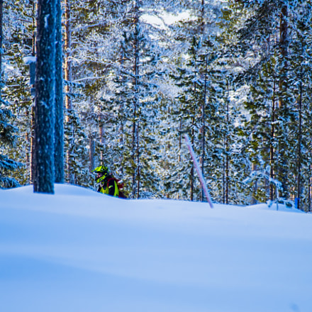 Meanwhile in Lapland, RICOH PENTAX K-S1, Sigma EX APO 100-300mm F4 IF