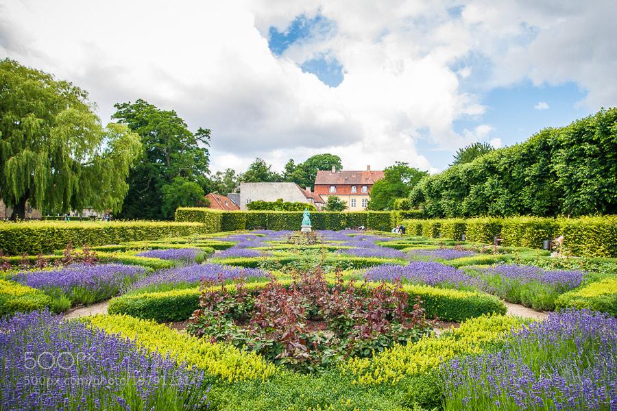 Photograph Copenhagen Queen's Garden by Jose Agudo on 500px