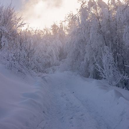 Misty road.