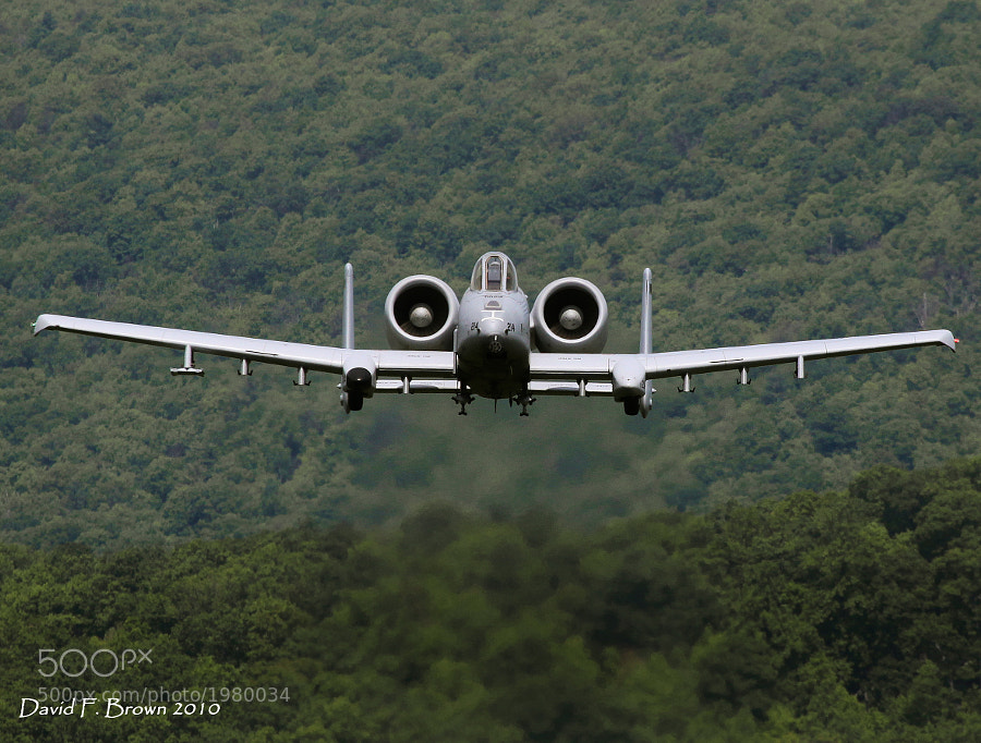 A-10 Thunderbolt II, AKA, the Warthog, low in the valley at the Grant Bollen Bombing Rang, Fort Indianton Gap, Pennsylvania