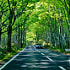 Driving in Aomori in early summer