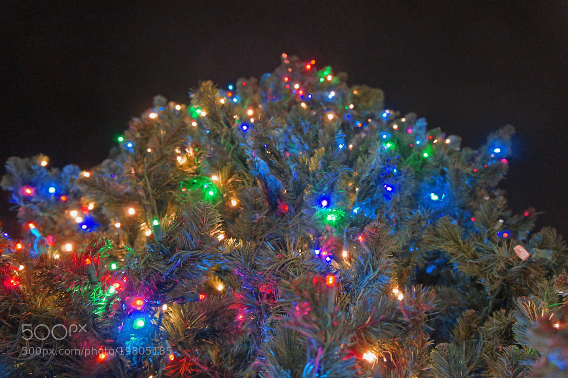 Photograph Christmas Lights by Brolin  Roney on 500px