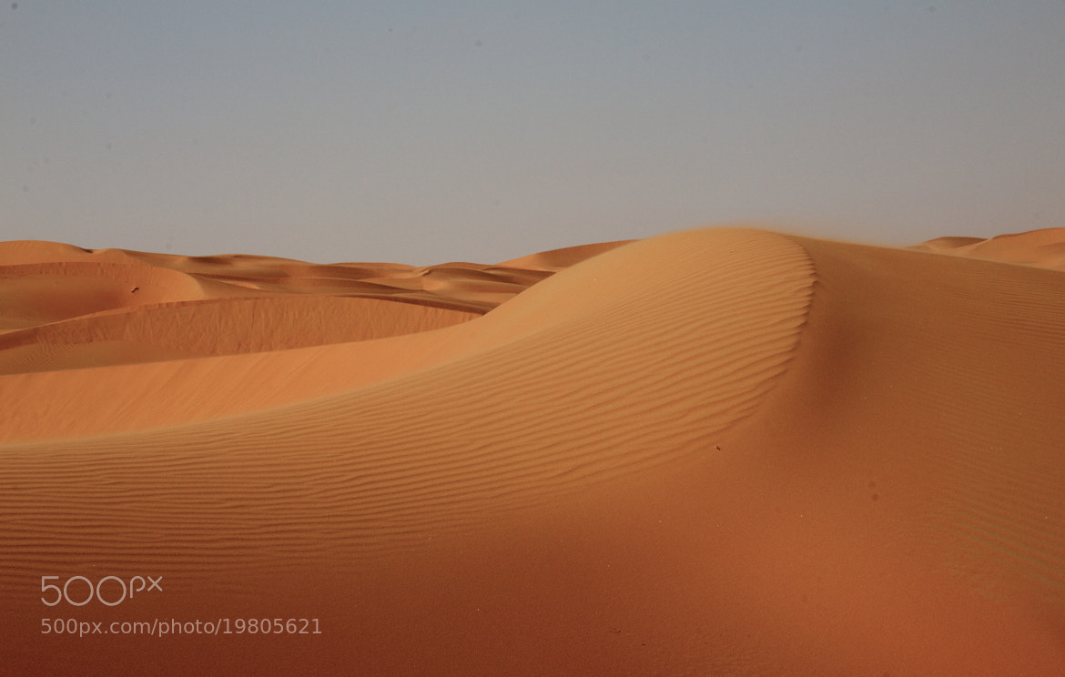 Photograph Dunes by Franck  on 500px