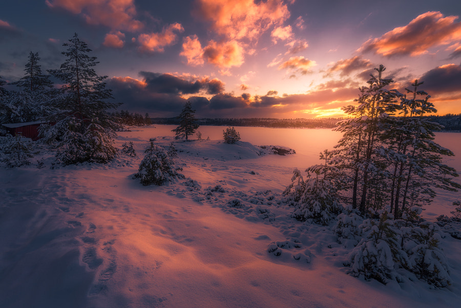 Land of Frost by Ole Henrik Skjelstad on 500px.com