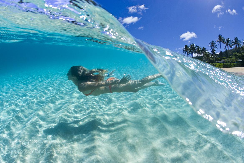 Photograph Aqua Dive by Sean Davey on 500px