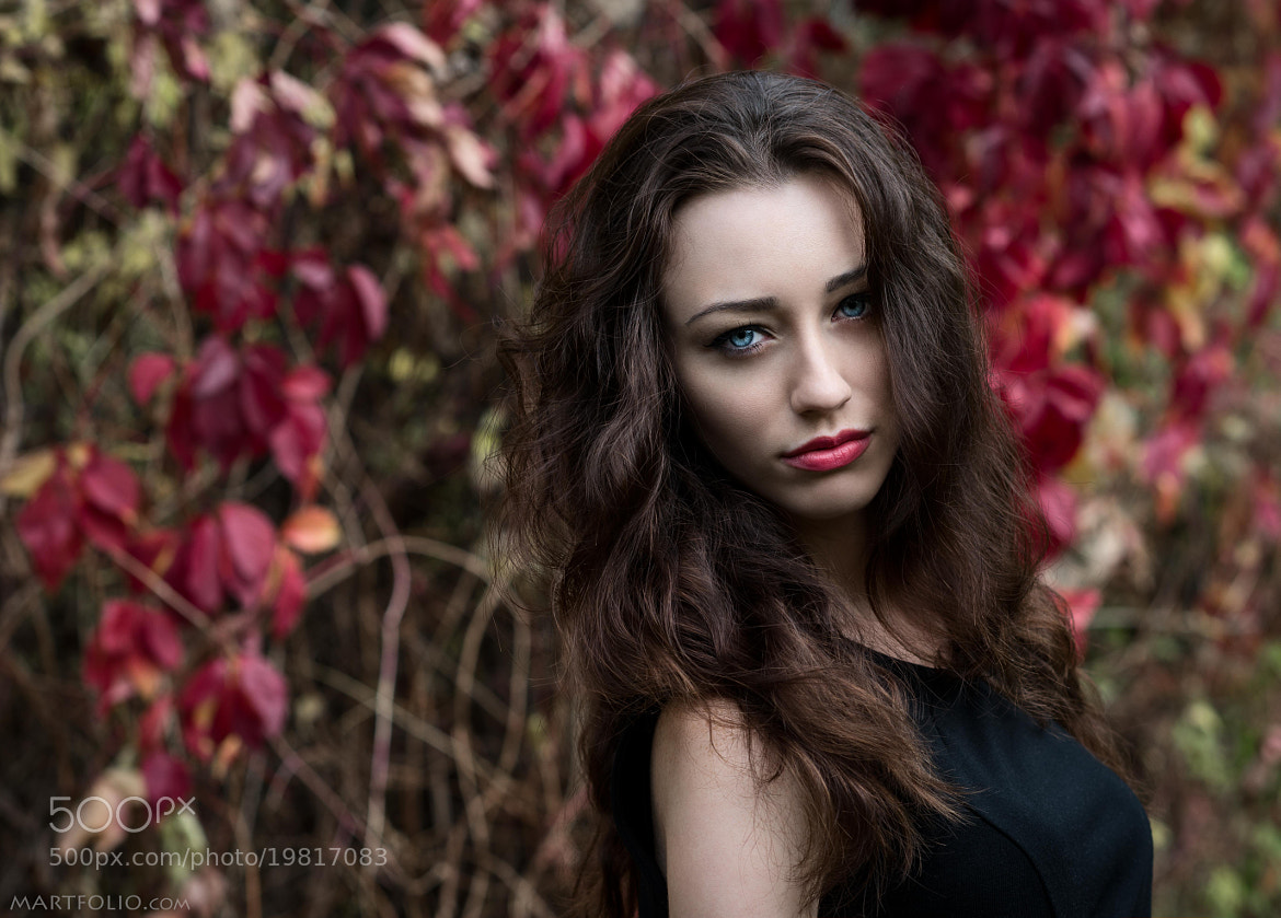 Photograph Color muse. by Mike Martfolio on 500px