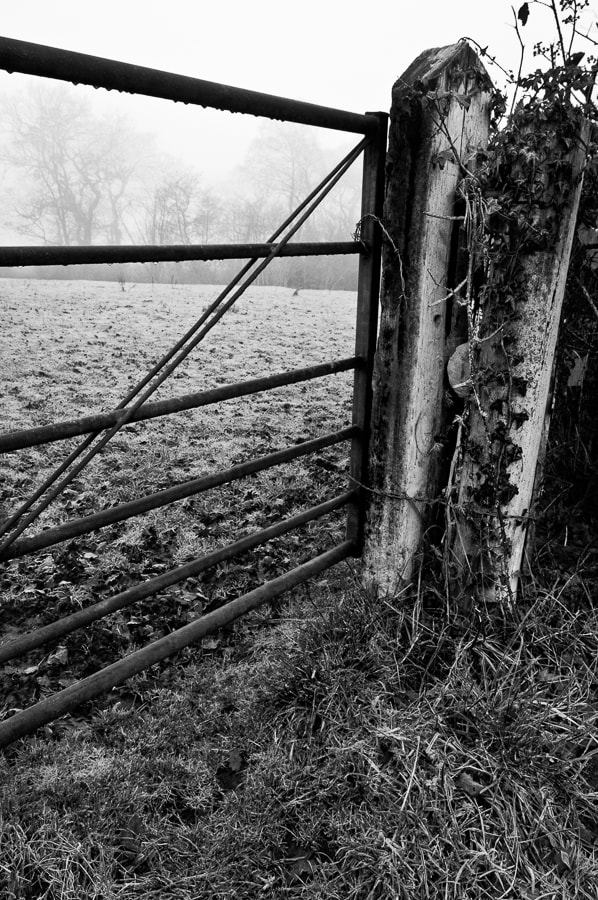 Photograph Gatepost by Dave Gregory on 500px