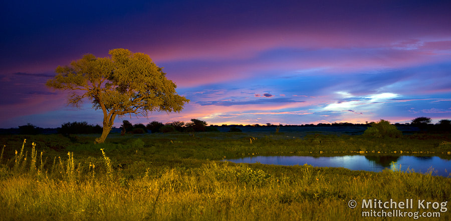 Photograph Sunset at Okaukuejo Camp | Etosha National Park by Mitchell Krog on 500px