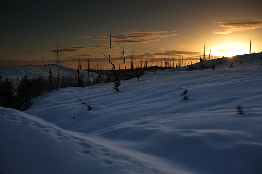 Photograph Fresh snow during sunset by Larry Chen on 500px
