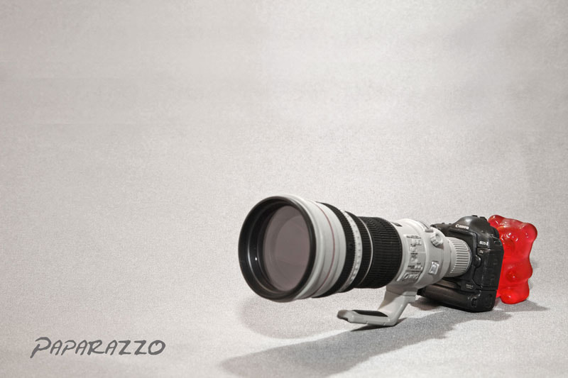 Photograph Paparazzo by lueckge on 500px