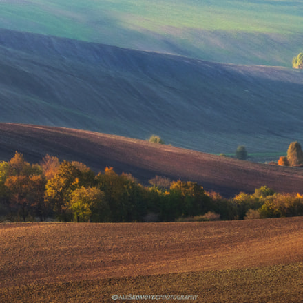 South Moravia fields in, Olympus E-M1, SIGMA 50-500mm F4-6.3 DG HSM