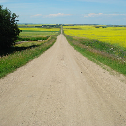 The Road Less Traveled, Sony DSC-W35