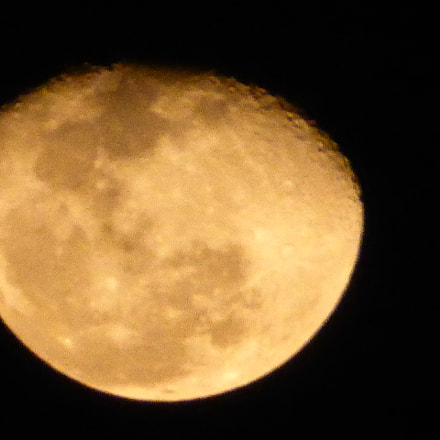 The Golden Moon, shot, Panasonic DMC-ZS40
