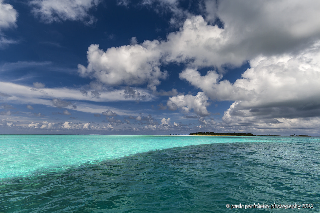 Photograph Shades of Blue by Paulo Penicheiro on 500px