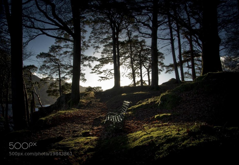 Photograph Whisper by John Burgess on 500px