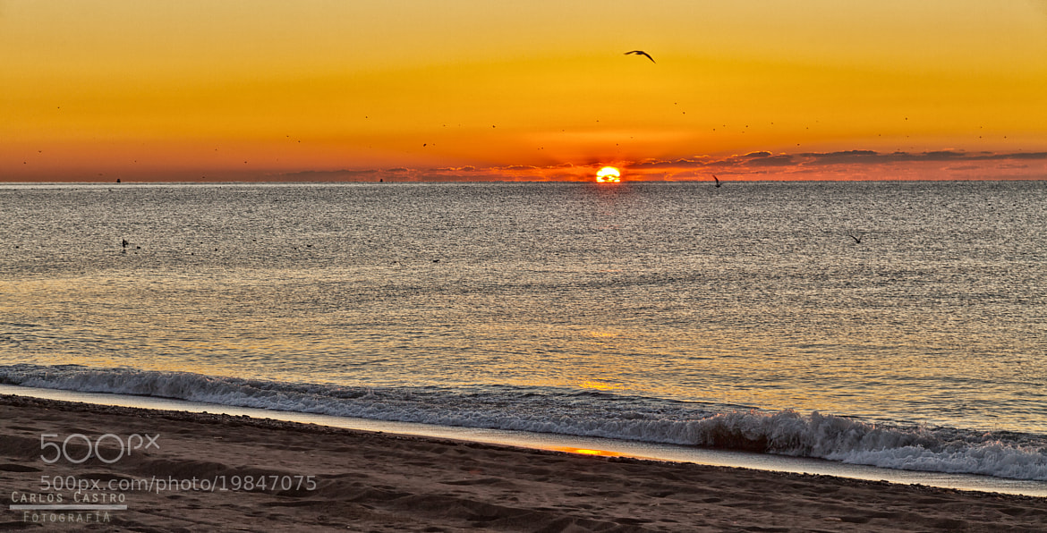 Photograph Sunrise in the Costa del Sol (Malaga, Andalucia) by Jose Carlos Castro Garcia on 500px