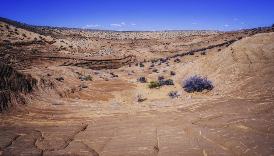 Lower Antelope Canyon XVII
