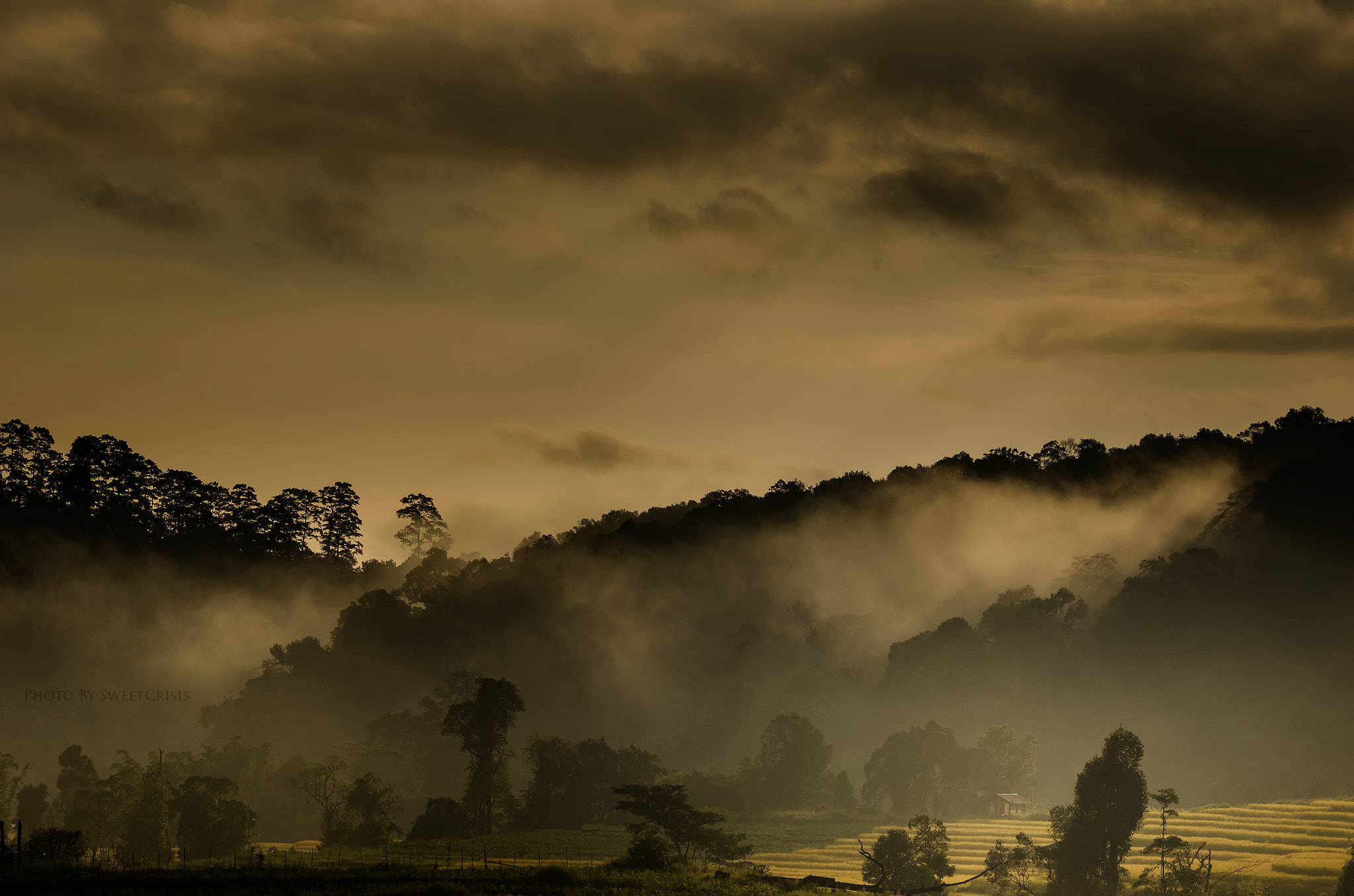 Photograph Morning by Peerasith Chaisanit on 500px