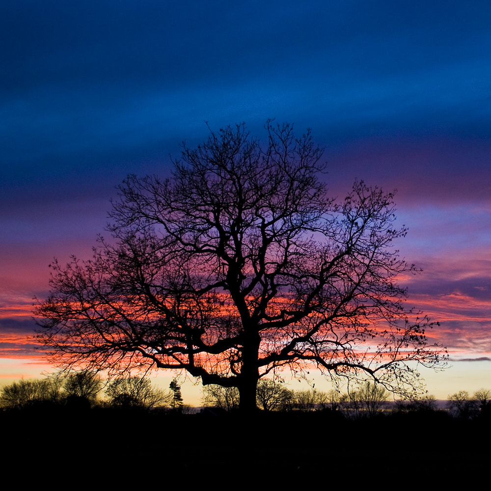 Photograph Shepherds' delight by Neil West on 500px
